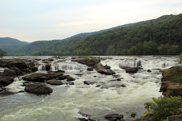 20150829_New_River_Gorge_047
