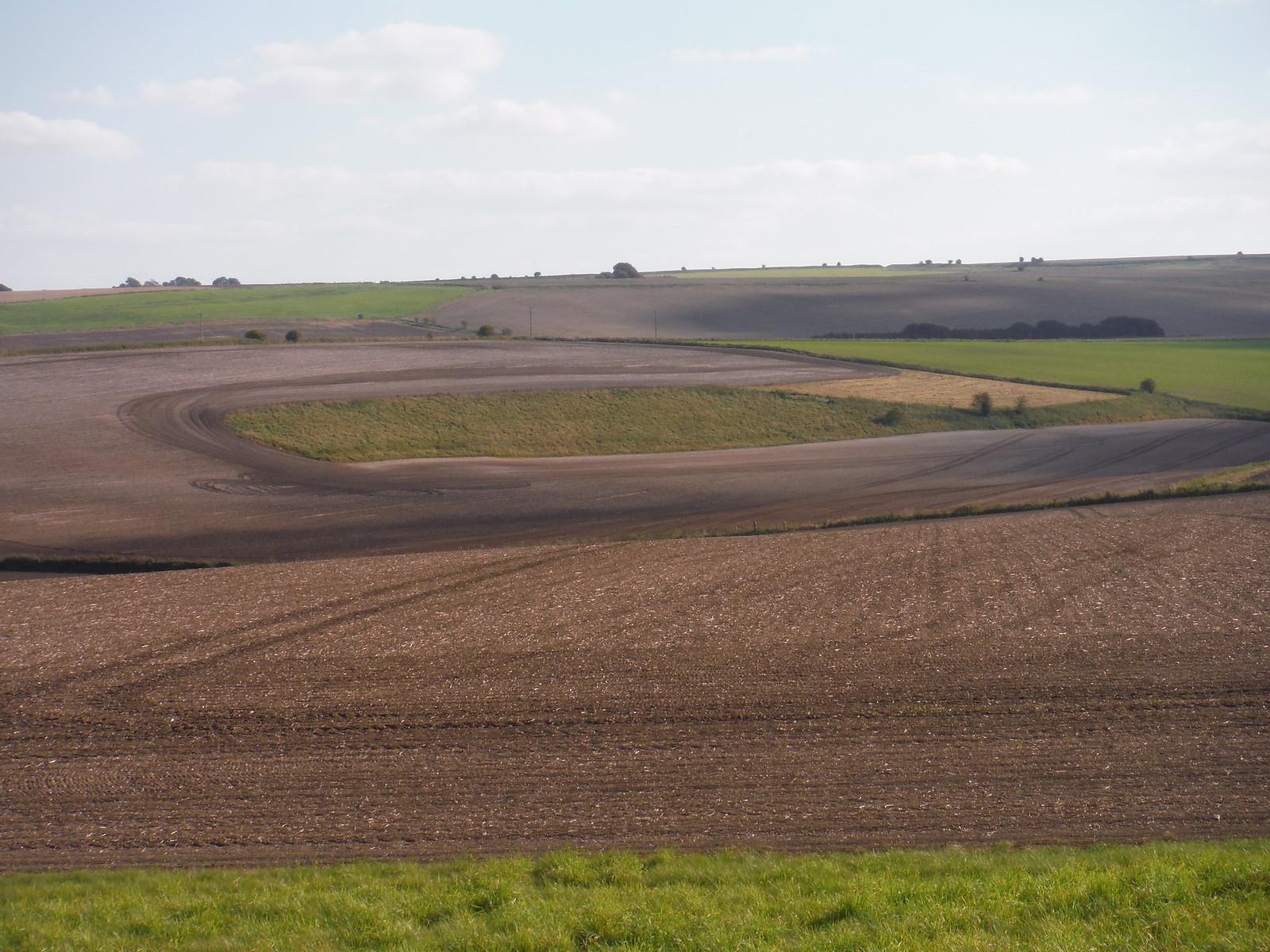 Fieldscape near West Kennett Long Barrow SWC Walk 255 Pewsey or Marlborough Circular via Avebury