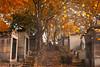 Autumn. Paris, France