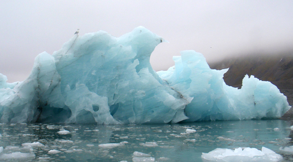 Monitoring icebergs in Svalbard