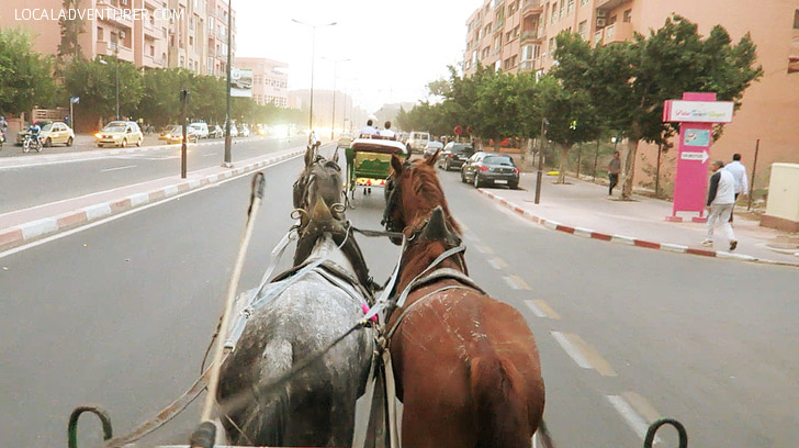 Caleche Ride (What to Do in Marrakech).