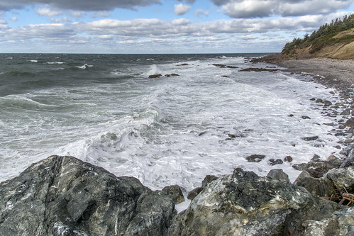 trees fall beach water rocks waves novascotia autum roadtrip hills antigonish northumberlandstraight highway337 easterncanadatrip sunrisetrail dsc4503 nikond7100 october2015 livingstonecove livingstonecovewharfroad