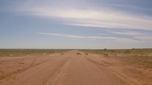 2015-12-25-21-15-10_Outback-0002.jpg
