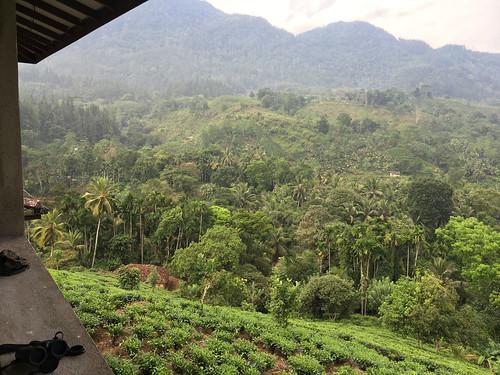 balcony rockviewmotel southernsrilanka srilanka sinharajaforest grahamekins appleiphone6s