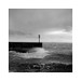 Storm by Wiesmier