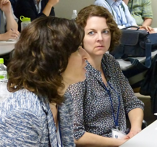 A riveting discussion: Jennifer Greiman is intent on Dawn Coleman's question at an early session of the conference.