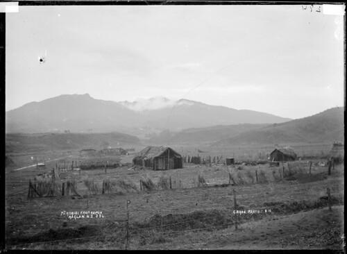 Mt Karioi from Kopua, 1 August, 1910. Maori whare ...