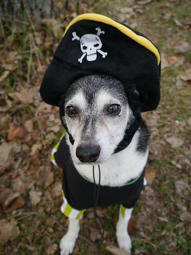 2015-10-06 - Peedee Pirate - 0002 [flickr]