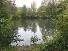 IMG_6156.jpg - Photo of Herpy-l'Arlésienne