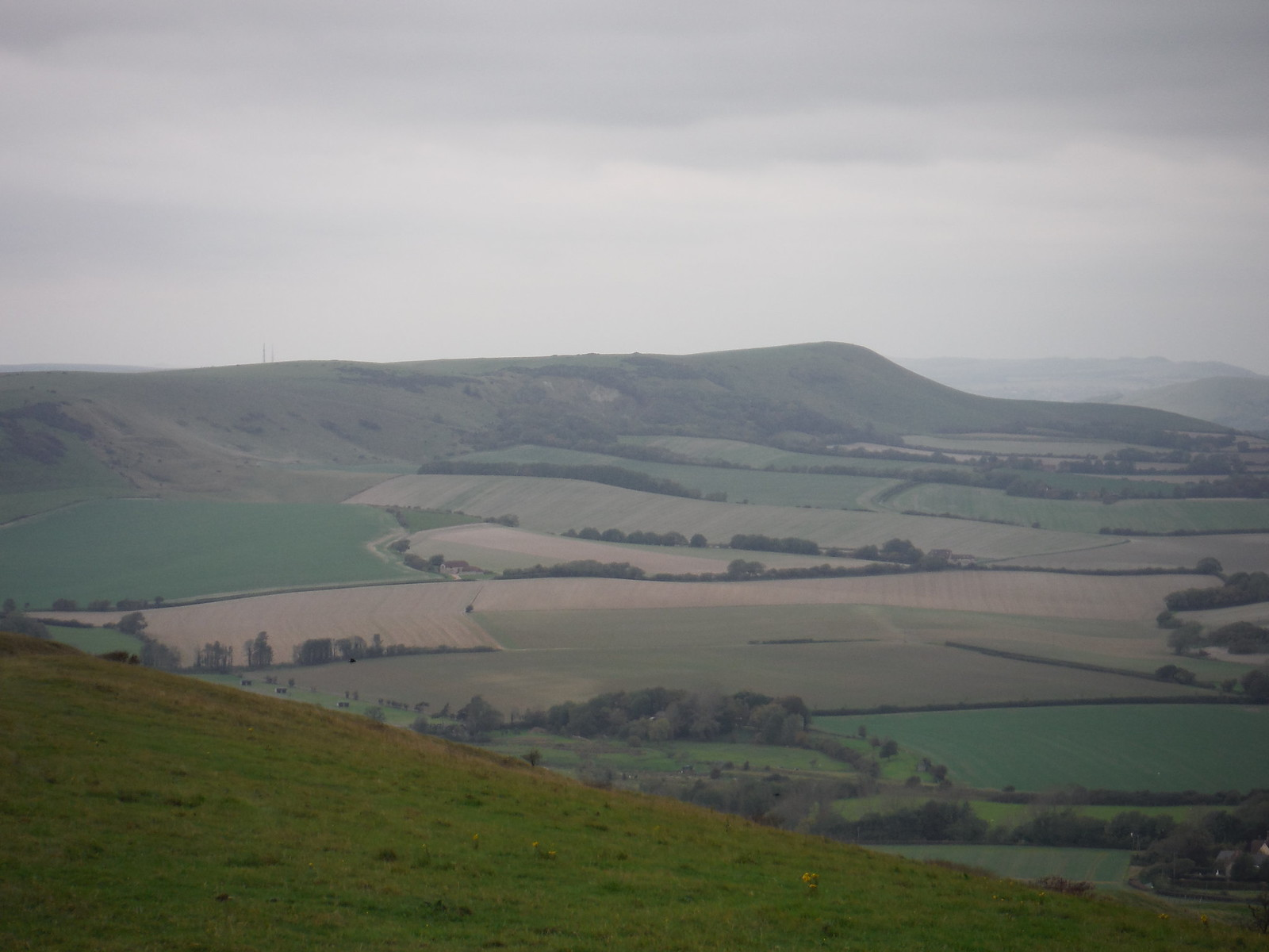 Bedddingham Hill, from Windover Hill SWC Walk 25 - South Downs Way 8 : Southease to Eastbourne