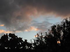 Βροχή μετά από πολύ καιρό στη Ψίνθο