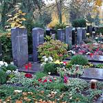 Gräberreihe von Billeder Verstorbenen neben dem Denkmal auf dem Karlsruher Hauptfriedhof