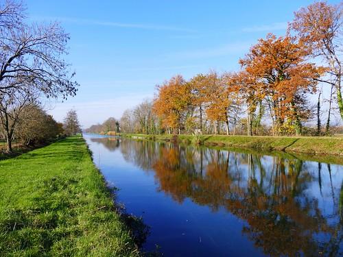 Canal latéral à la Garonne - Puybarban - Gironde - Aquitaine - France