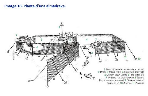 almadraba01