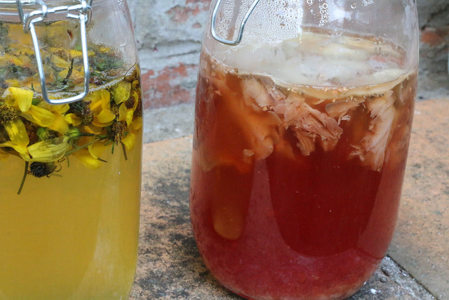 Solar Natural Dyeing with Fly Agaric Fungi and Biden Flowers