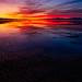 "Salt Lake Sunset by Scott Stringham ""Rustling Leaf Design"""