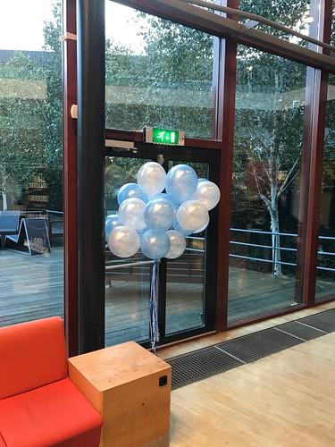 Heliumballonnen Hoge School Rotterdam