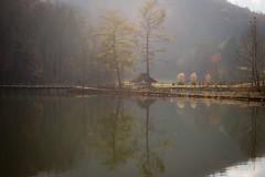 Steele Creek (crop1)