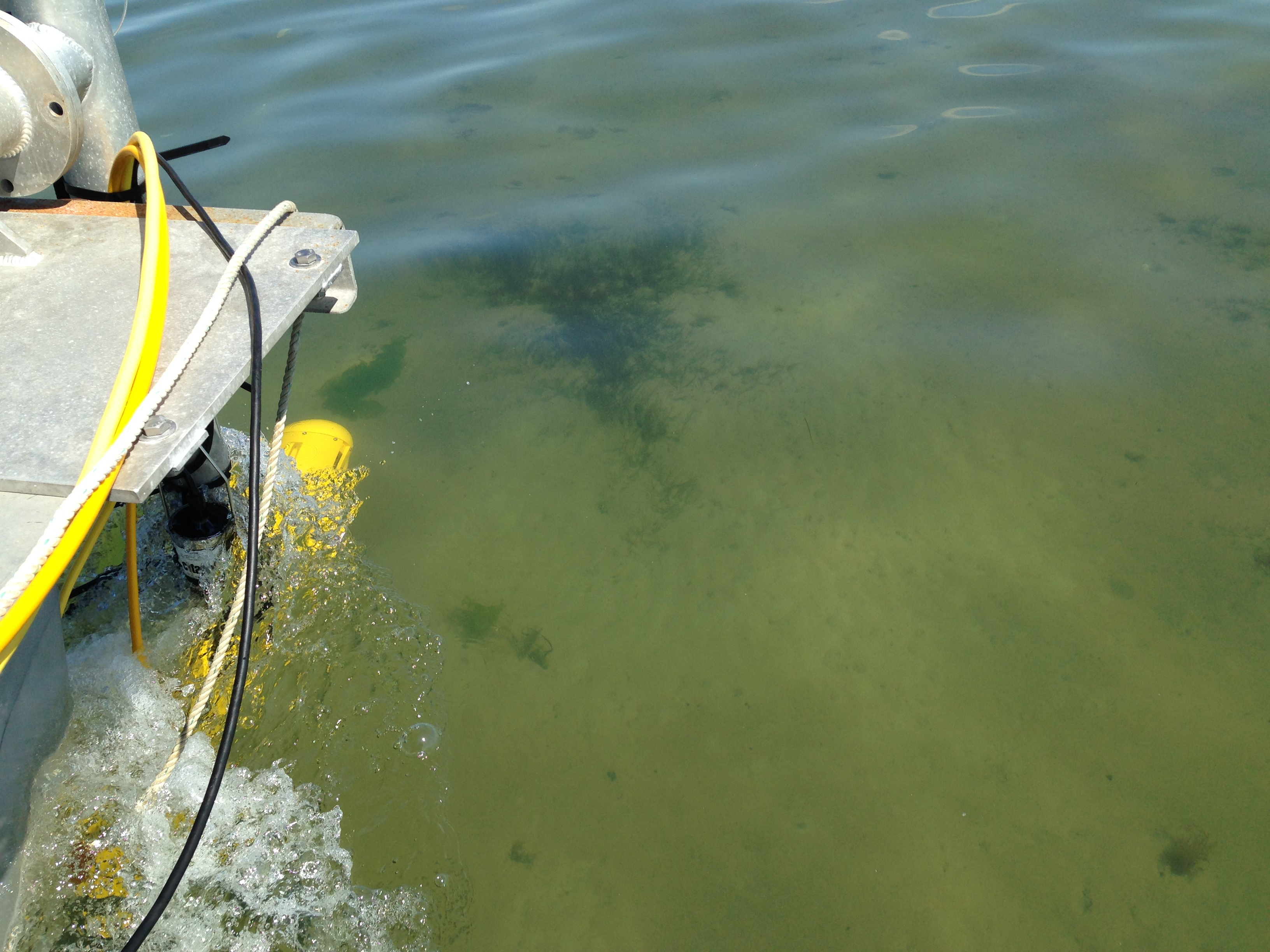 The sonar technology that Dr. King's team uses for submerged habitat mapping is called interferometric side-scan sonar. The sonar device releases sound pulses, which bounce back and deliver data that shows the contours of the seafloor.