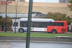 Metrobus 2519 Arl VA 10-15-14