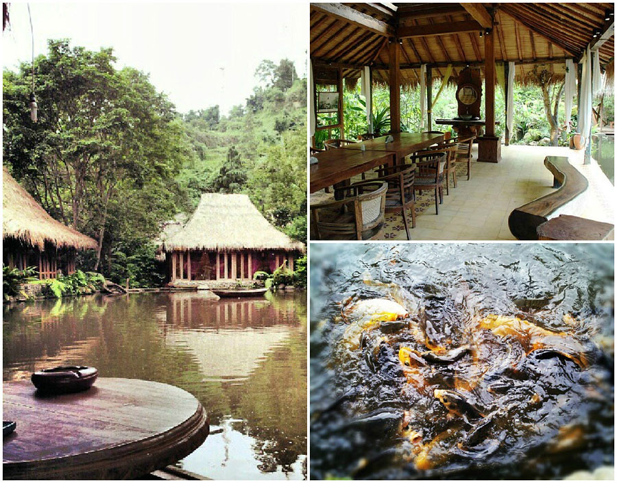 Here You Can Enjoy Activities Ranging From Outbound Tracks To A Pampering Spa