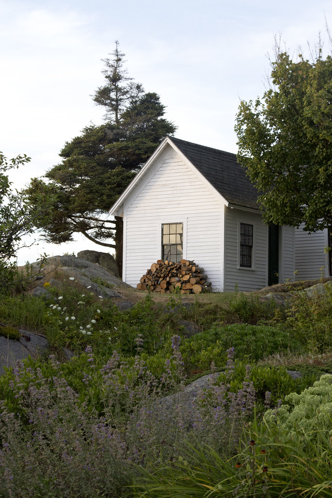 out and about: monhegan island | reading my tea leaves