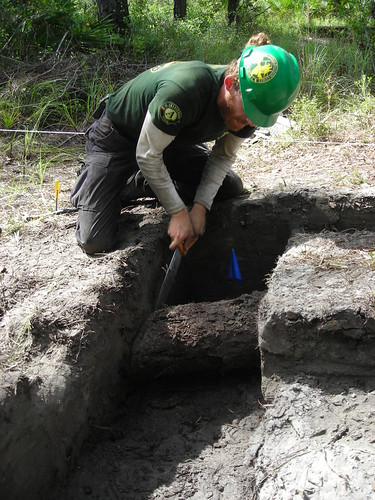 Texas Conservation Corps member removing a section of timber from the original 1812 fort