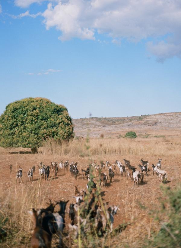 RYALE_Madagascar_Blog2_053