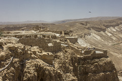 Dead Sea & Masada029