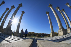 Capitol Columns @ US National Arboretum
