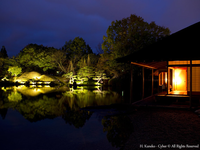 夜の庭園風景(Yokokan Garden at night)