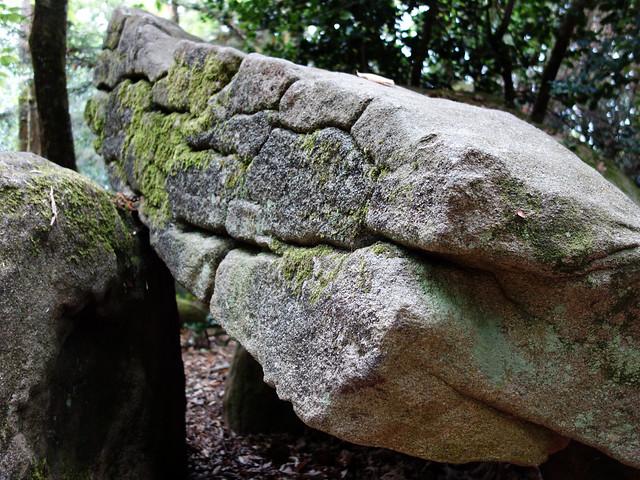 Le dolmen de Ménez-Liaven près de Pluguffan - Finistère - Juillet 2015 - 06