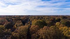Autumn Over Highpoint