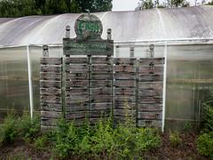 Pasco Master Gardener Plant Sale