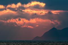 Solpor/Sunset