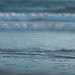 Shore by jillyspoon