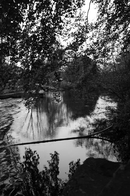 Weir Reflections BW