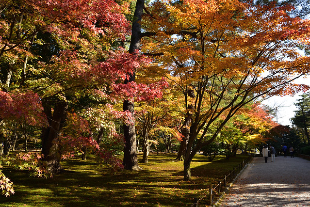 山崎山の紅葉 兼六園 金沢, Nikon D750, AF-S Nikkor 28mm f/1.8G