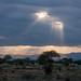 Under an African Sky by altsaint