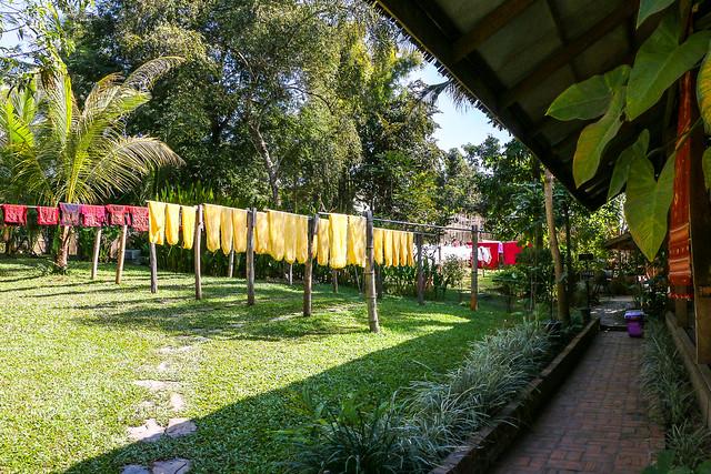 Garden in Ock Pop Tok Living Crafts Centre, Luang Prabang, laos ルアンパバーン、Ock Pop Tok工房の庭