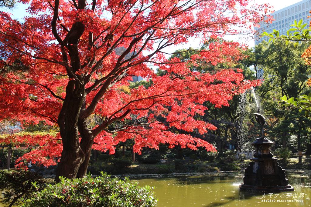 東京賞楓-日比谷公園23