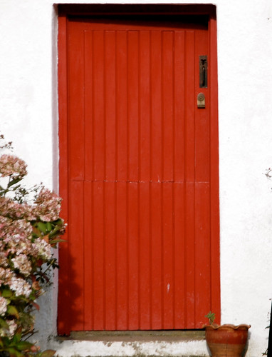 kilbora raheen wexford traditionalcottage red flowers white