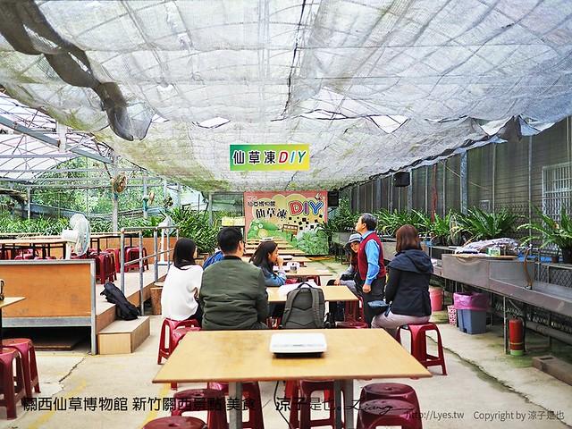 關西仙草博物館 新竹關西景點 美食 22