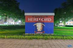 Hereford, hildo kropplein, Amsterdam.