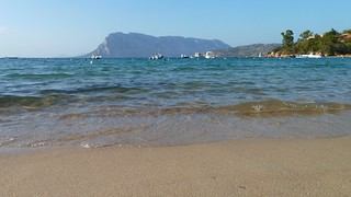 Bild von Spiaggia delle Farfalle. island see sardinia tavolara