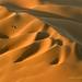 Namibia Untamed by Marsel van Oosten