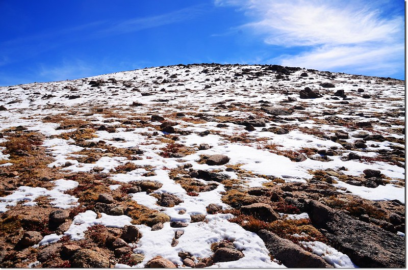 On Parnassus' NW slopes near the summit, There is still snow on the top of Parnassus 2