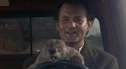 dia-de-la-marmota-groundhog-day