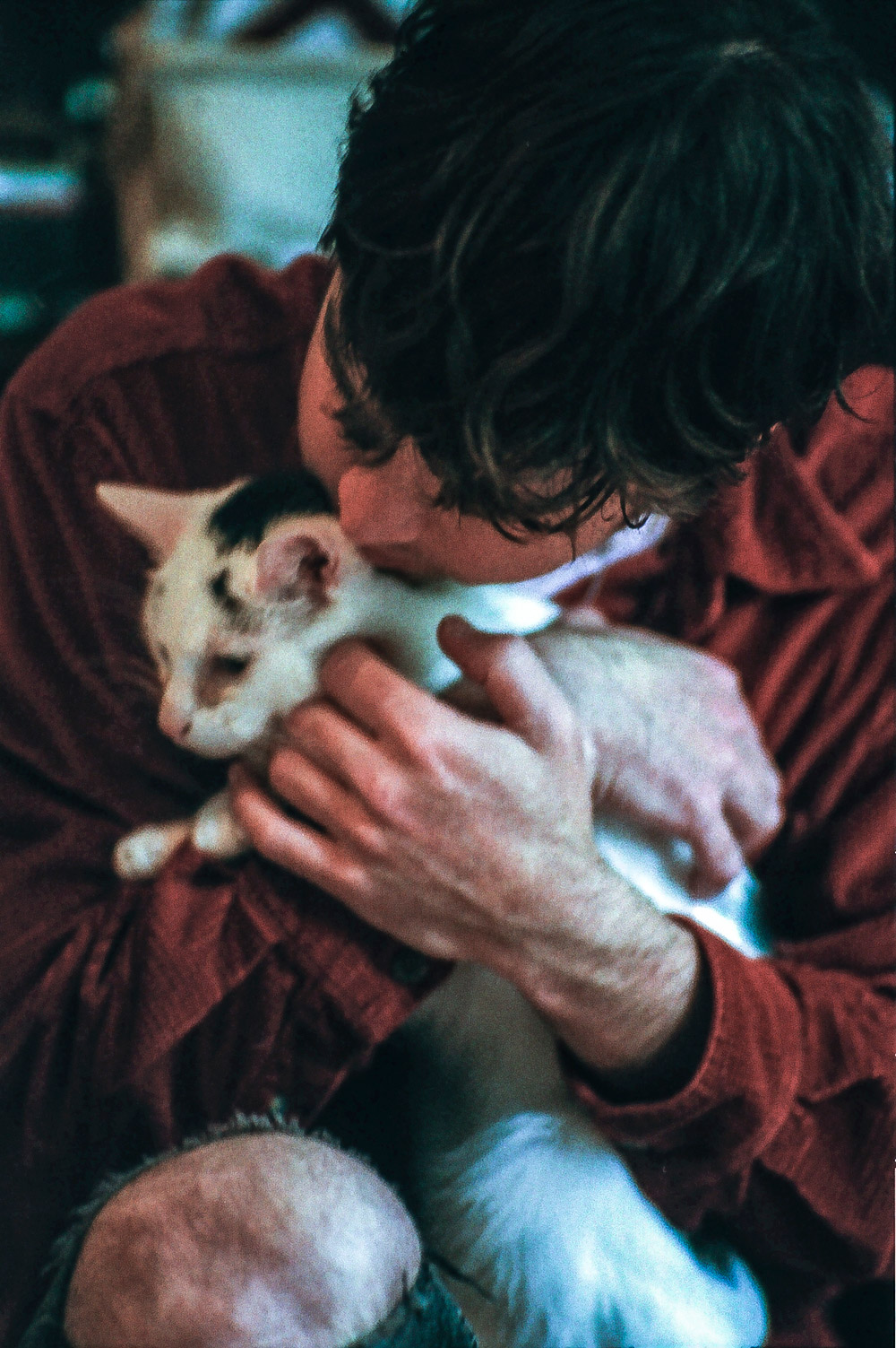 Acts and their Cats: Younghusband