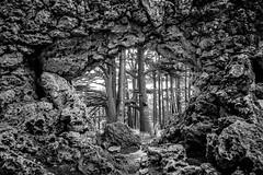 Through the Rocks